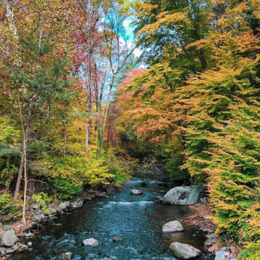 10+ Great Spots to Enjoy the Great Outdoors in Stamford