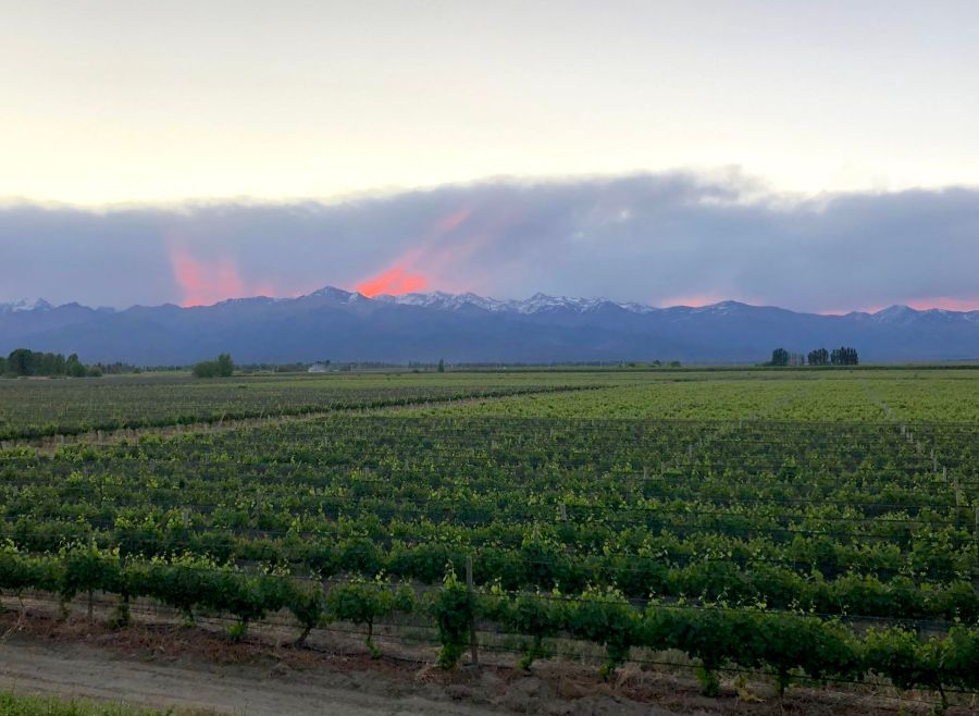 Sunset behind the Andes in the Uco Valley, Argentina