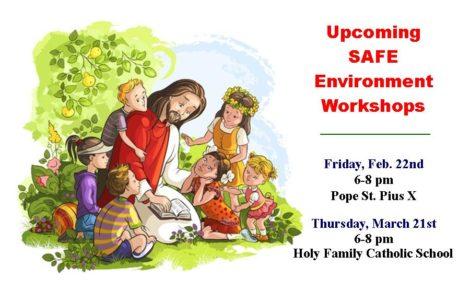 Safe Environment Workshop