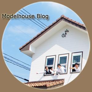 model house blog