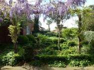 Wisteria framing front garden
