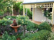 Queenscliff, Victorian garden