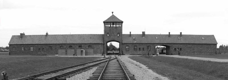 Le génocide des Juifs et des Tziganes