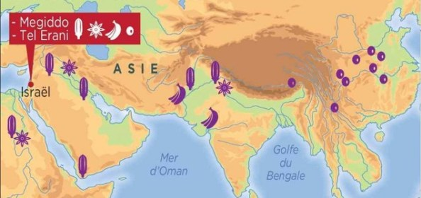 Les Philistins s'approvisionnaient en Asie du Sud