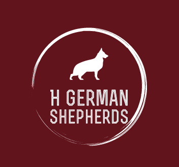 Heinrichs German Shepherds