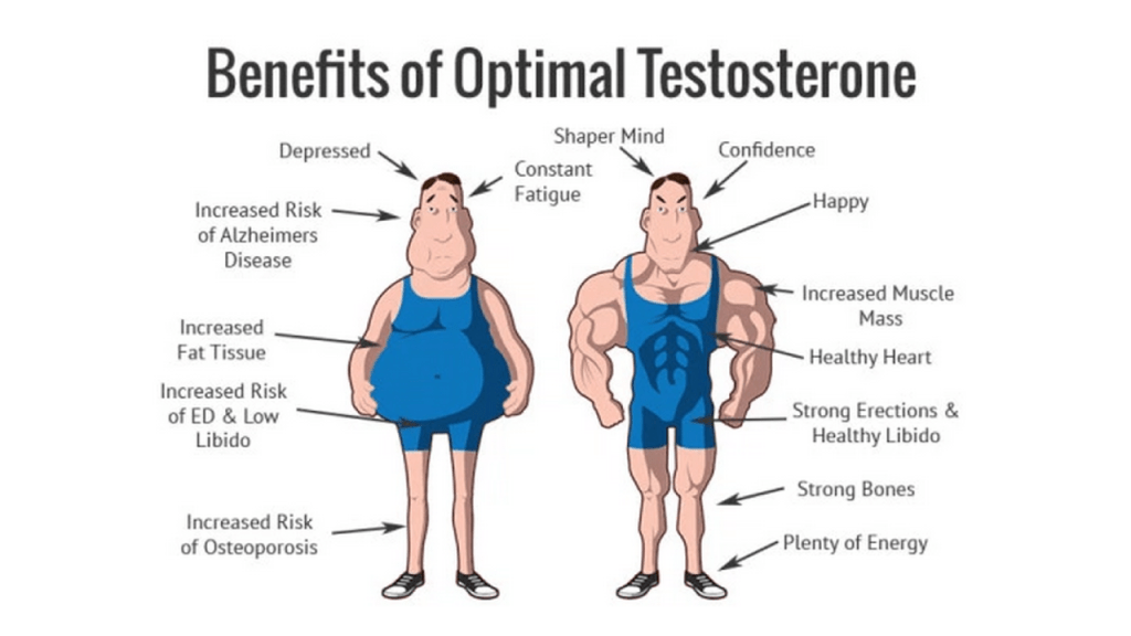 Benefits of HGH and Testosterone