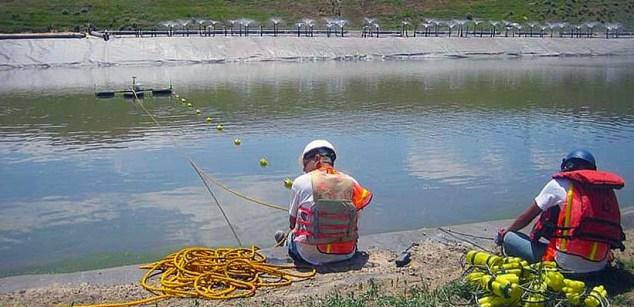 Floating liner leak location array for ponds