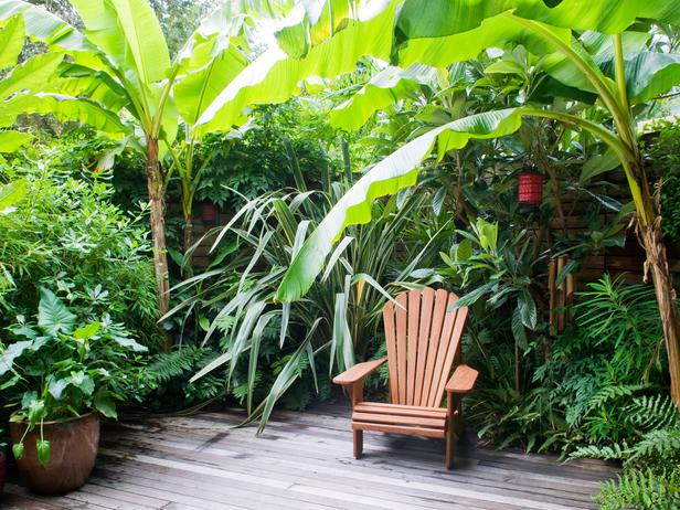 Tropical Garden Retreat | Landscaping Ideas and Hardscape ... on Tropical Backyards  id=73959