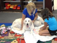 Read with a Dog at the Library.