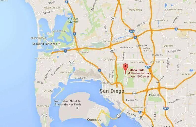 Balboa Park car accident