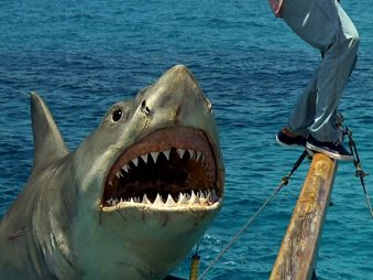 jaws-the-revenge-1108x0-c-default
