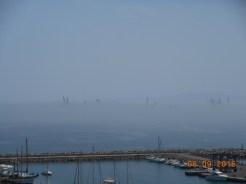 Grúas en la niebla