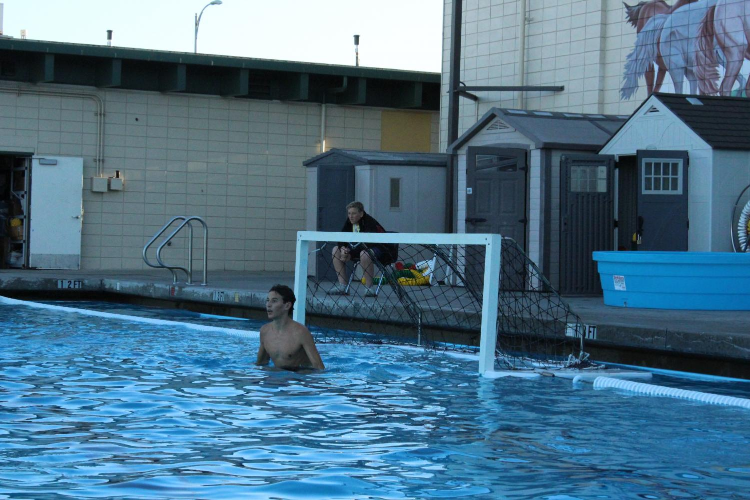 'The desire to get better': the secret behind water polo goal-tending