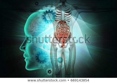 SYSTEM MEDICINE