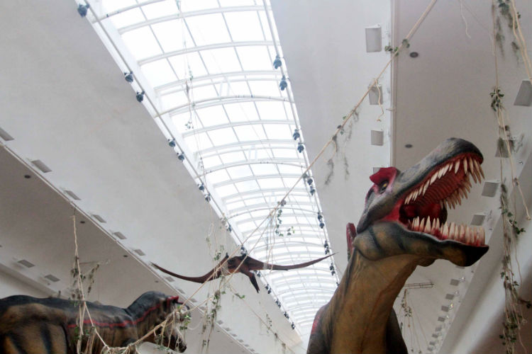 hi-mundim-dinossauros3