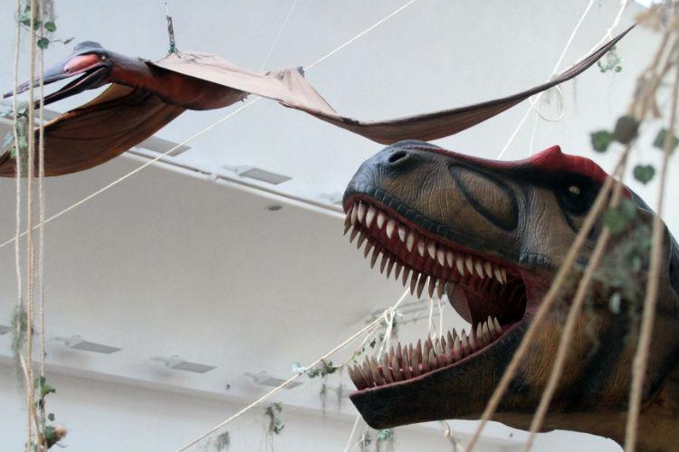 hi-mundim-dinossauros6
