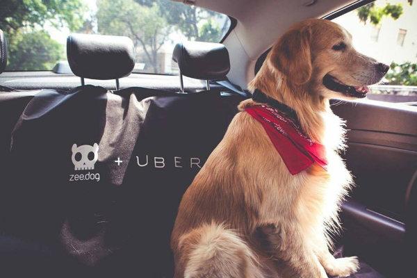 UberPET (Foto: Facebook/Uber)