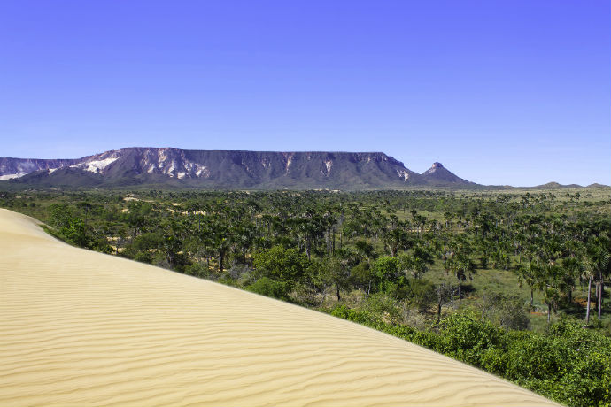 Jalapão, Tocantins (Foto: Wikimédia - Gabriel Castaldini)