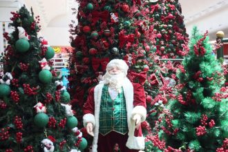 Jardim de Natal no Riopreto Shopping (Fotos: Ricardo Boni)