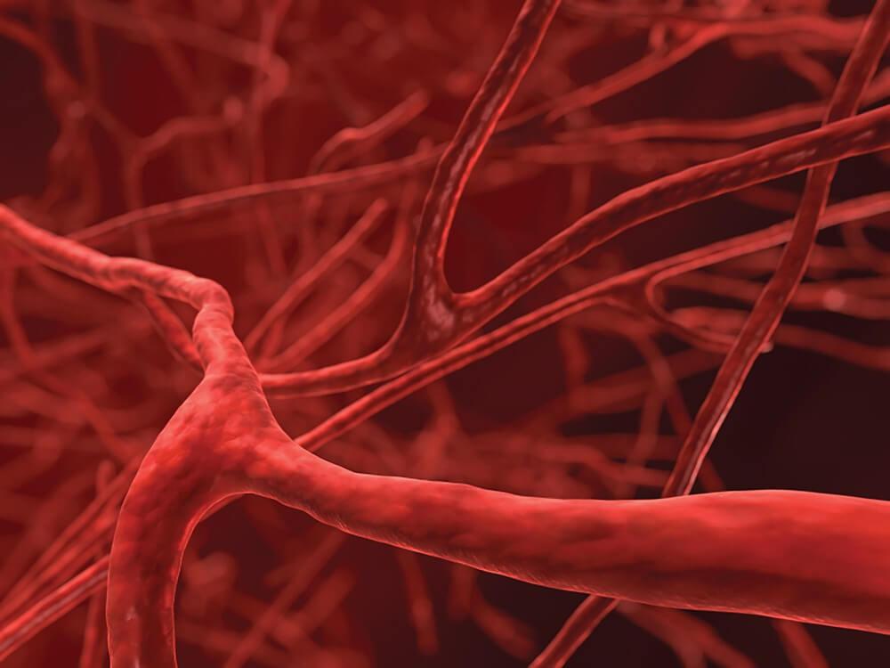 Печать кровеносных сосудов открывает широкие возможности для лечения пациентов - planetologia.ru
