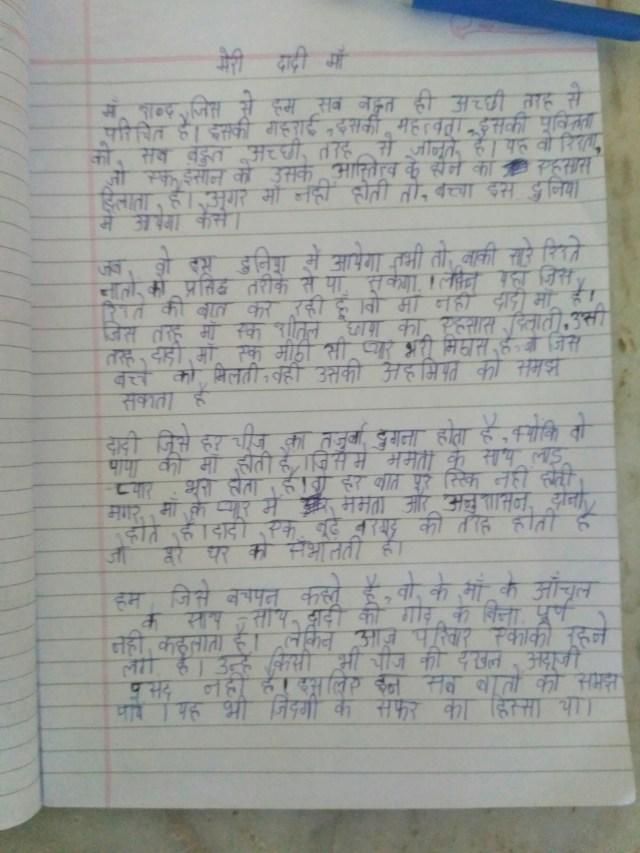 Essay Meri Maa In Punjabi | Applydocoument co