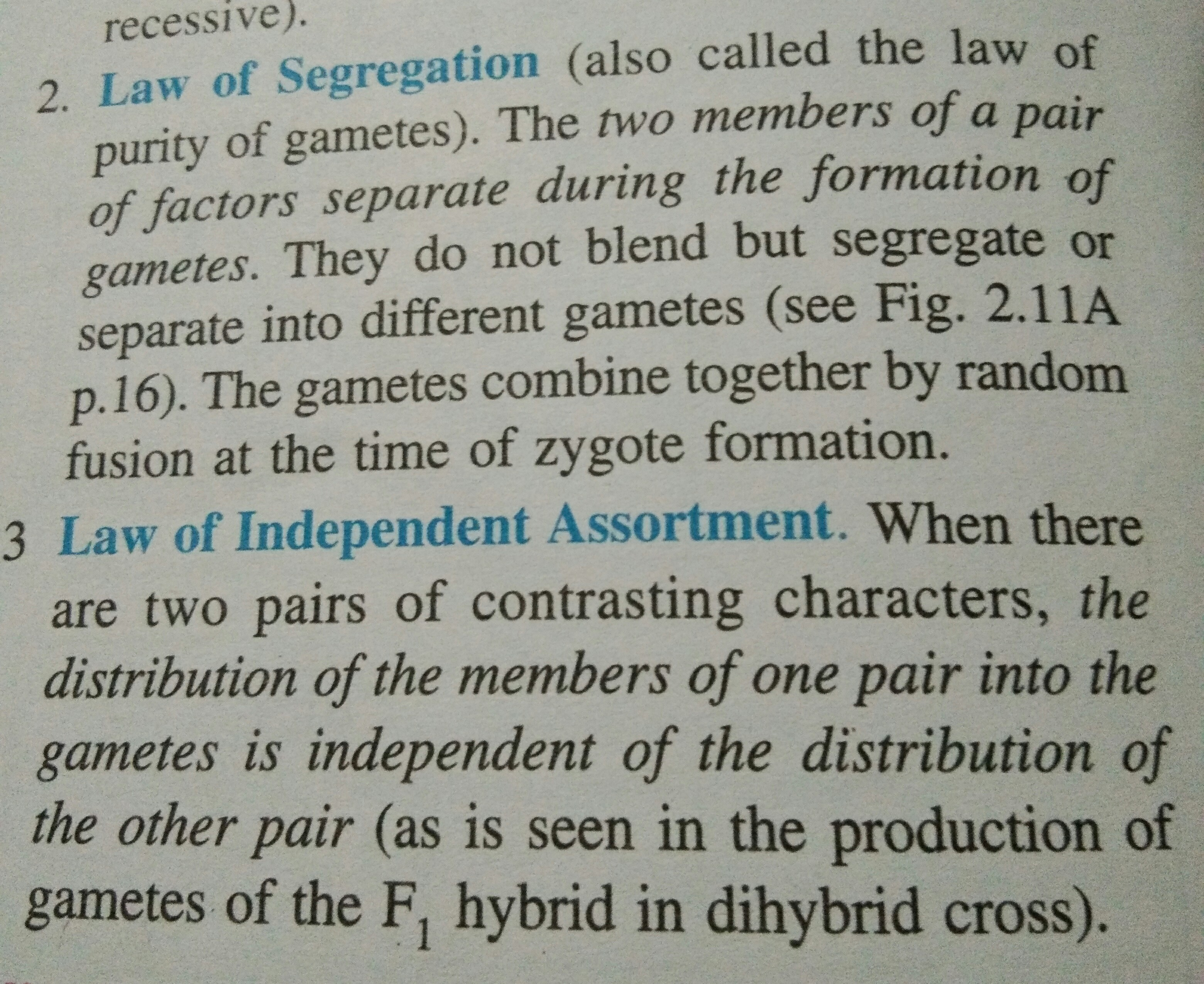 Law Of Segregation And Law Of Independent Assortment In