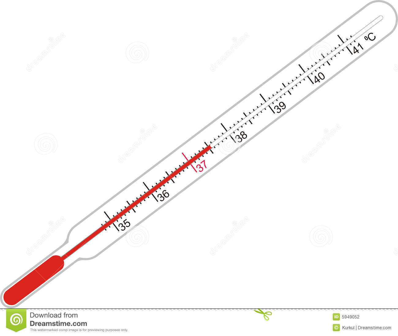 Drawing Of Laboratory Thermometer