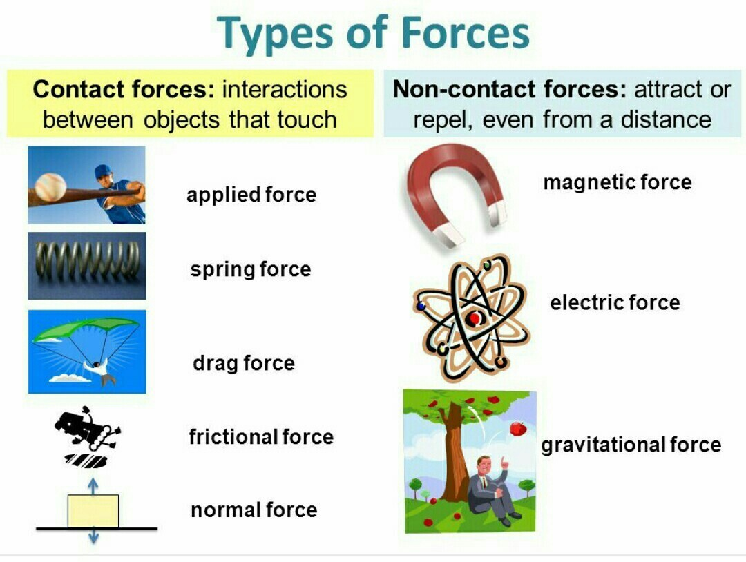 Collect The Pictures That Illustrate Contact Forces And