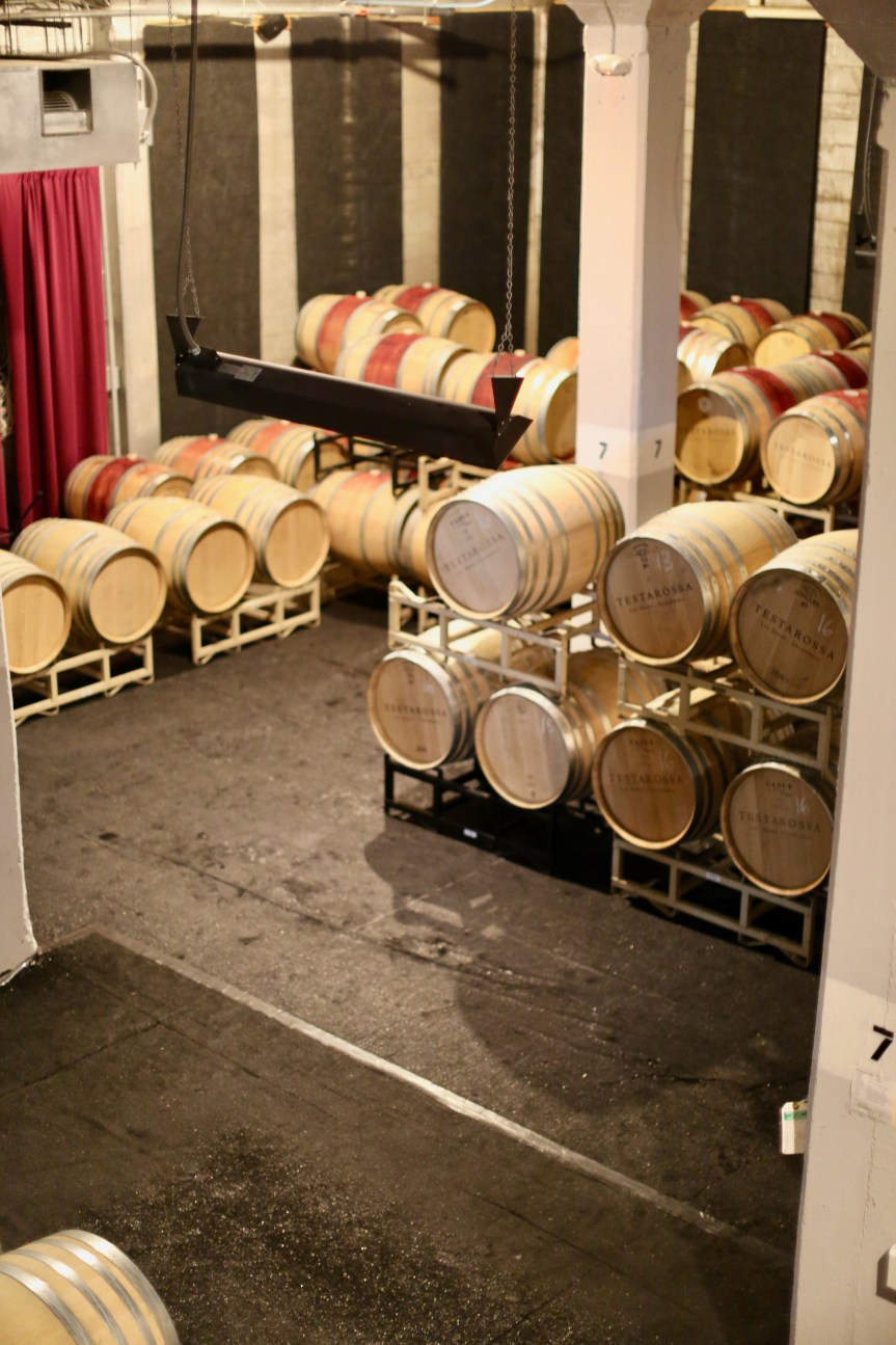 Wine tour at Testarossa Winery, with a rich wine history