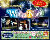 Winter Night