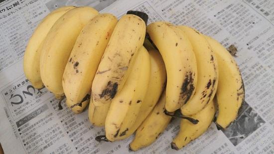 島バナナ4