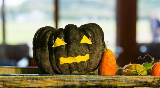 ハロウィンかぼちゃ緑