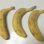 バナナを長持ちさせる方法を試した結果【画像あり】