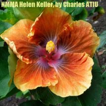 NMMA Helen Keller