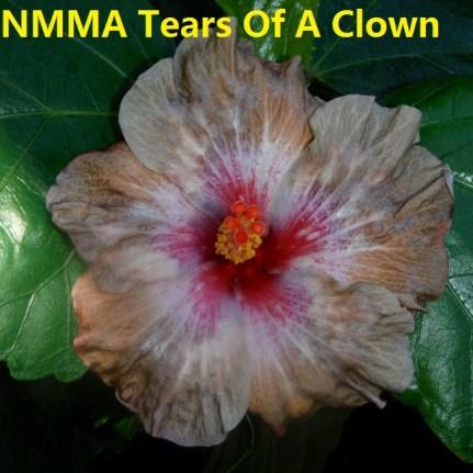 45 NMMA Tears Of A Clown