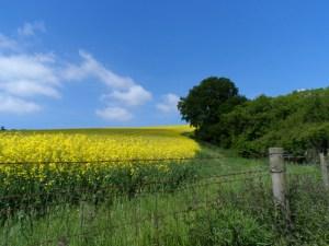Explore our unspoilt rural landscape