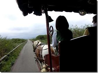 サロマ湖観光馬車2