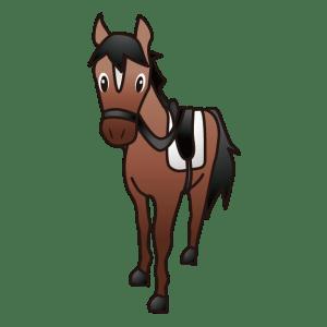 あんずの乗馬調教をしてくださった方と出会うことができた!