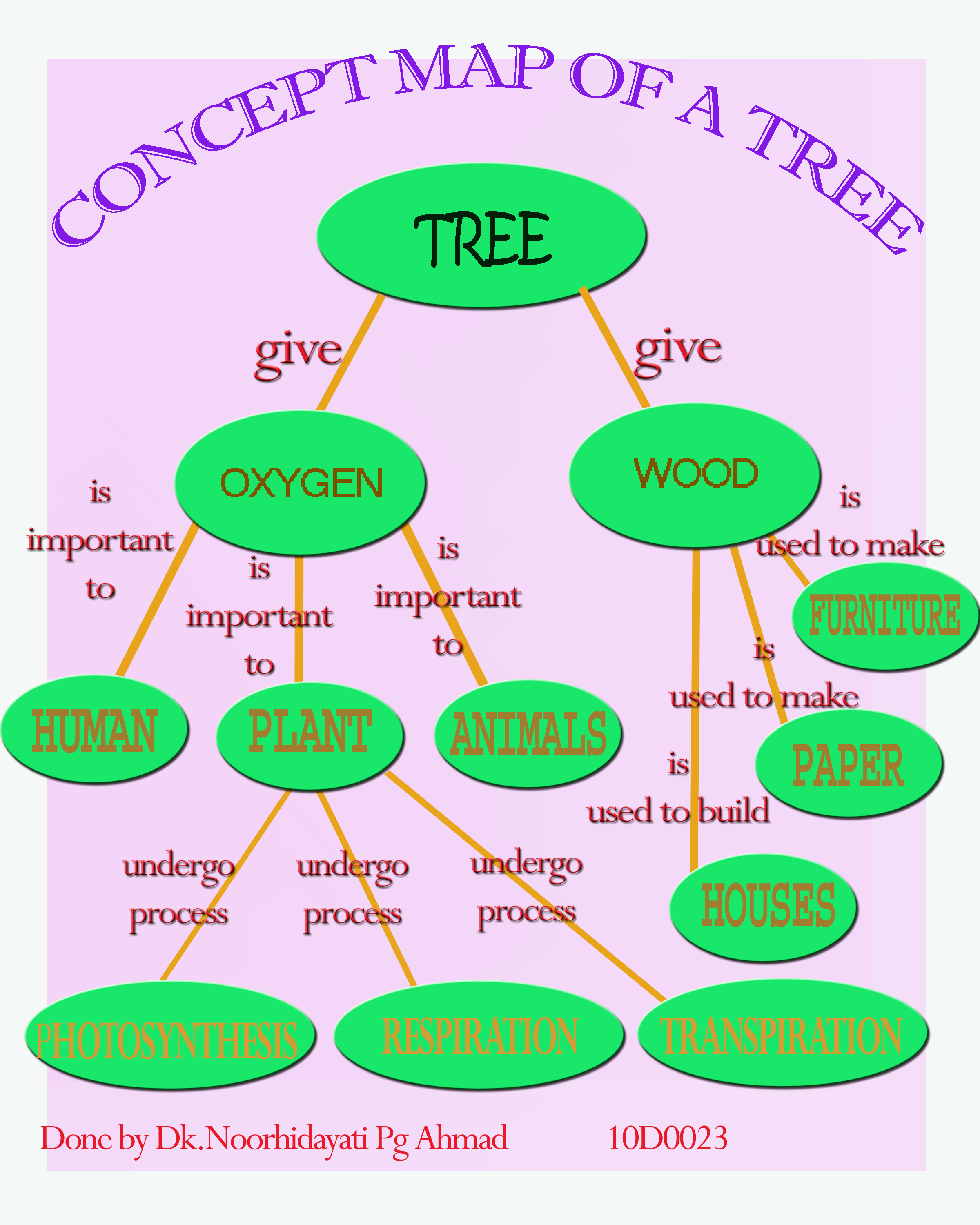 Video Concept Map Of A Tree