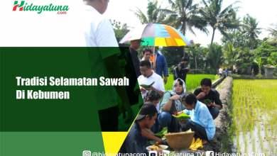 Photo of Tradisi Selamatan Sawah Di Kebumen