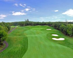 Local Golf Vista