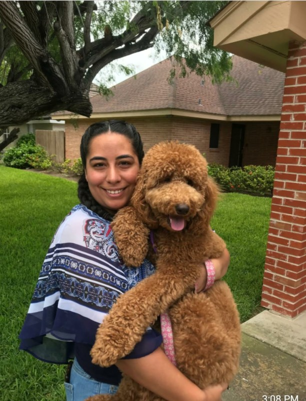 woman holding Hidden Acres Puppies Goldendoodle