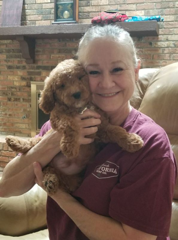 hidden acres puppies client with goldendoodle
