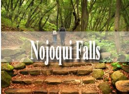 Nojoqui Falls in Santa Barbara is a hidden waterfall