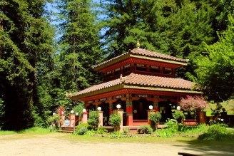 Land of Medicine Buddha provides classes and space for group and personal retreats, on a forested piece of property at the foothills of the Santa Cruz