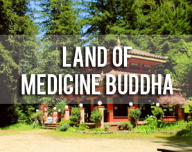 land of medicine buddha (5)