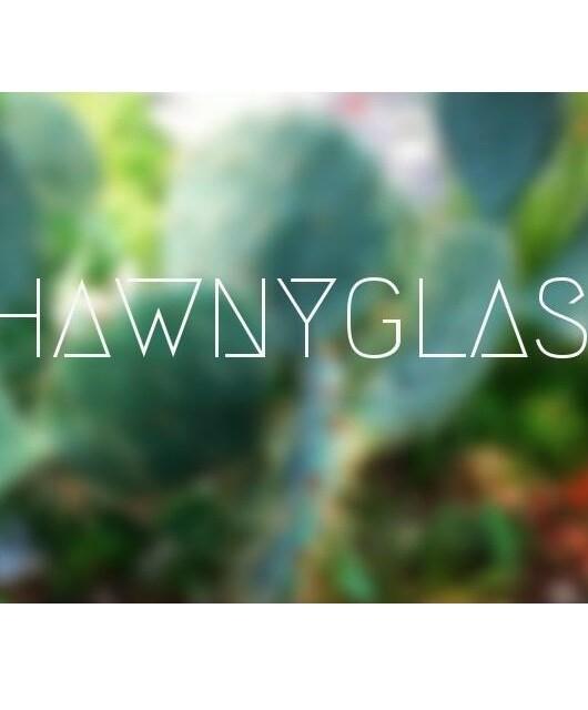 $hawnyglass - Hidden Herd