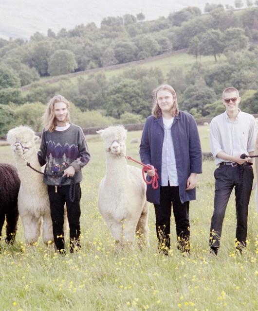 Photo of Treeboy & Arc featured on Hidden Herd new music blog