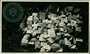 An image of a pile of parcels on the ground, each with an attached paper tag stating the parcel's place of origin. The pile is surrounded by small flags from different countries stuck into the ground.