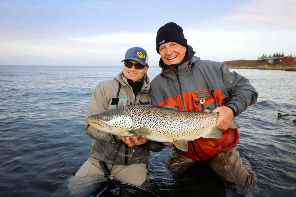 Big Brown Trout   Fly Fishing Tour   Hidden Iceland